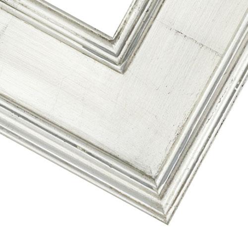 2PG Silver Frame