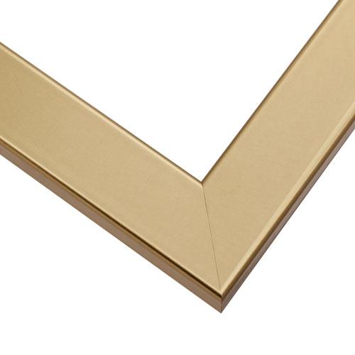 HP19 Gold  Frame