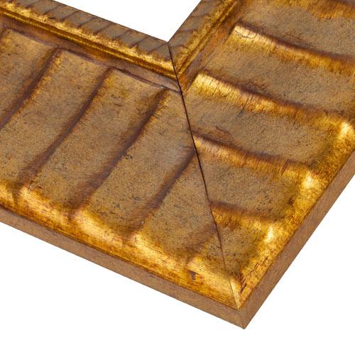 WX564 Antiqued Gold Frame